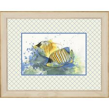 <strong>Phoenix Galleries</strong> Angel Fish 2 Framed Print