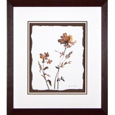 <strong>Phoenix Galleries</strong> Wildflowers 3 Framed Print