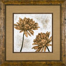 White Washed Dahlia 1 Framed Print