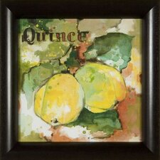 <strong>Phoenix Galleries</strong> Quince on Canvas Framed Print