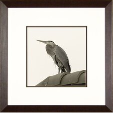 Heron on Roof Framed Print