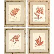 <strong>Phoenix Galleries</strong> Nature Prints Framed Prints