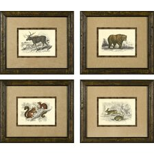 <strong>Phoenix Galleries</strong> Hare Framed Prints