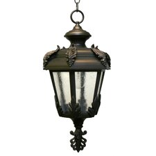 Parisian PE1500 Series 1 Light Hanging Lantern