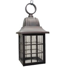 600 Series Medium 1 Light Outdoor Hanging Lantern