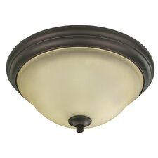 Carter 2 Light Flush Mount
