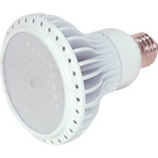 120-Volts LED Light Bulb