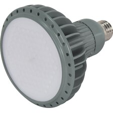 KolourOne LED PAR38 Lamp in Gray