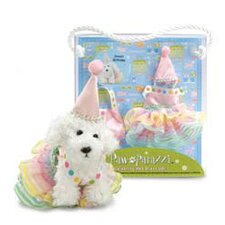 Pawparazzi Birthday Dress Up Set