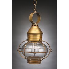 Onion Medium Base Socket Caged 1 Light Hanging Lantern