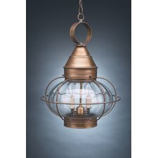 <strong>Northeast Lantern</strong> Onion Medium Base Socket Caged 2 Light Hanging Lantern