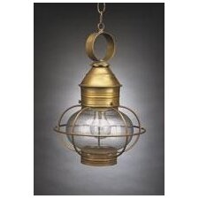 Onion Medium Base Socket Cage 1 Light Hanging Lantern With Galley