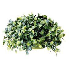<strong>Barreveld International</strong> Faux Boxwood Half Ball Floor Plant in Planter