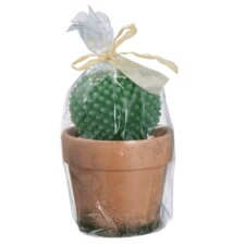 Potted Cactus Candle