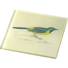 Glass Bird Coaster (Set of 4)