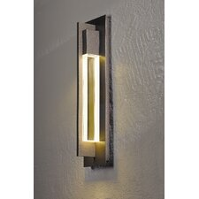 Axis Medium 1 Light  Outdoor Sconce