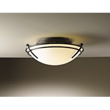 <strong>Hubbardton Forge</strong> Tryne 2 Light Flush Mount in Dark Smoke