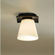 Wren 1 Light Semi Flush Mount