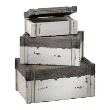 <strong>Cyan Design</strong> Alder Boxes in Distressed White and Gray