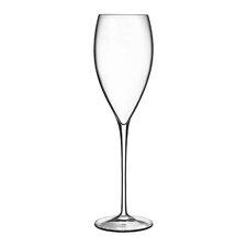 Magnifico Champagne Flute (Set of 6)