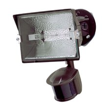Motion Sensor Halogen Light