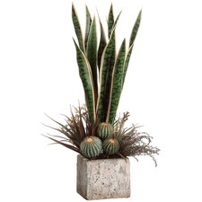"26"" Sansevieria and Lavender Plant Arrangement with Pot"