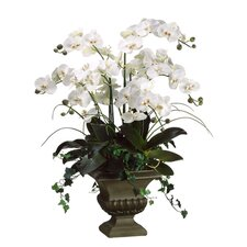 "39"" Phalaenopsis Floral Arrangement with Fiberglass Urn"