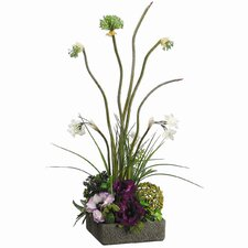Anemone, Allium, Twig Ball in Container