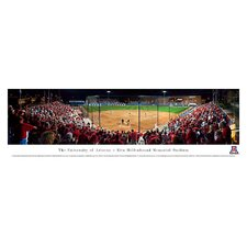 NCAA Baseball Unframed Panorama