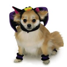 Bat Dog Headpiece