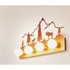 Moose Mountain 4 Light Flat Vanity Light