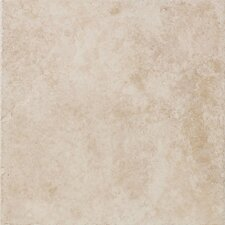 "Safari 16"" x 16"" Floor Field Tile in Swaziland"