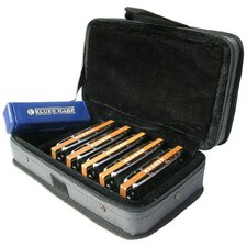 Blues Harp MS Harmonica Case in Chrome - Key of C, G, A, D, E
