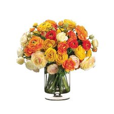 Mixed Color Ranunculus in Vase