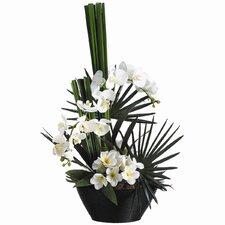 "31"" Phalaenopsis and Plumeria with Bamboo Bowl"