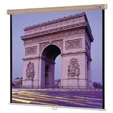"High Power Designer Model B with Fabric Case in Pepper - 60"" x 80"" Video Format"