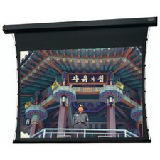 Tensioned Cosmopolitan Electrol Cinema Vision Electric Projection Screen