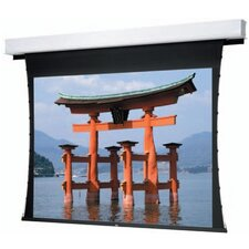 """Tensioned Advantage Deluxe Electrol High Contrast Cinema Perf 113"""" Electric Projection Screen"""