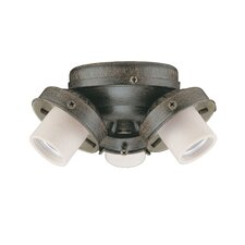Turtle Three Light Fitter Ceiling Fan Light Kit