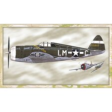P 47 Thunderbolt Wall Art