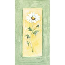 Summer Daisy Wall Art Collection