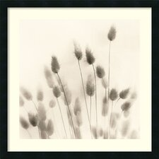 Italian Tall Grass No. 2 Framed Art Print by Alan Blaustein