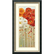 'Daisies Fall II' by Danhui Nai Framed Painting Print