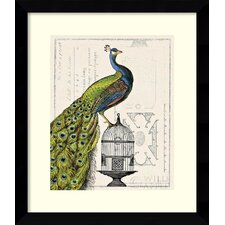 Peacock Birdcage I Framed Print By Sue Schlabach