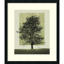 'Nature's Shapes II' by Harold Silverman Framed Photographic Print