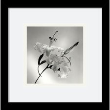 'Flower Series X' by Walter Gritsik Framed Photographic Print