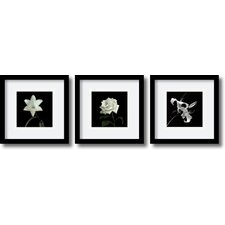 'Flower Series Satin' by Walter Gritsik 3 Piece Framed Photographic Print Set