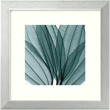 "<strong>Amanti Art</strong> Leaf Bouquet by Steven N. Meyers, Framed Print Art - 14.12"" x 14.12"""