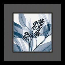 "<strong>Amanti Art</strong> Eucalyptus I by Steven N. Meyers, Framed Print Art - 13.29"" x 13.29"""