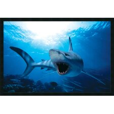 "Shark Framed Print Art - 25.66"" x 37.66"""